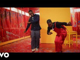 VIDEO: Skiibii - Somebody ft. Kizz Daniel