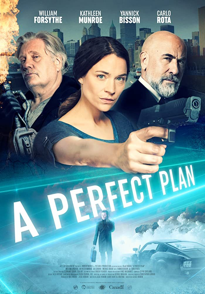 DOWNLOAD A Perfect Plan (2020) - Hollywood Movie Mp4