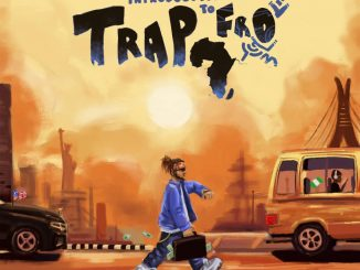 ALBUM: Yung6ix Introduction To Trap-Fro (Zip Download)