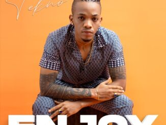 Tekno – Enjoy (Lyrics)