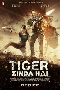 Tiger Zinda Hai - Bollywood Movie