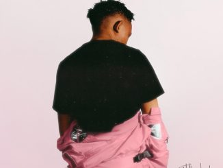 The Big Hash – Peace Of Mind