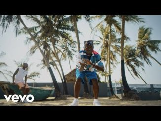 "VIDEO: DJ Spinall – ""Sere"" ft. Fireboy DML"